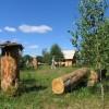 Drevinės bitininkystės ekspozicija Musteikos kaime