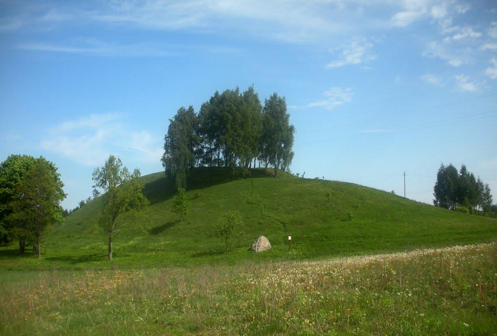 Pamiškės piliakalnis