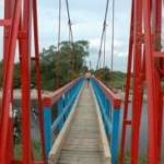 bezdžionu tiltas