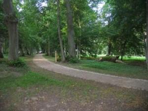 Vainezerio parkas