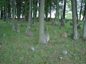 Vinkšnupių totorių kapinės 2