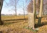Vinkšnupių totorių kapinės 3