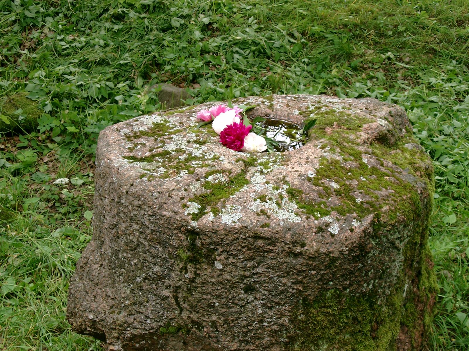 Šilalės kūlis - Aukuro akmuo