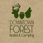 Kempingas Downtown Forest Hostel & Caming