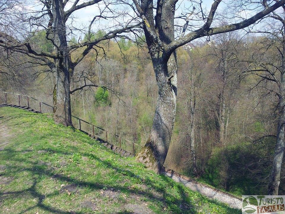 Alytaus piliakalnis