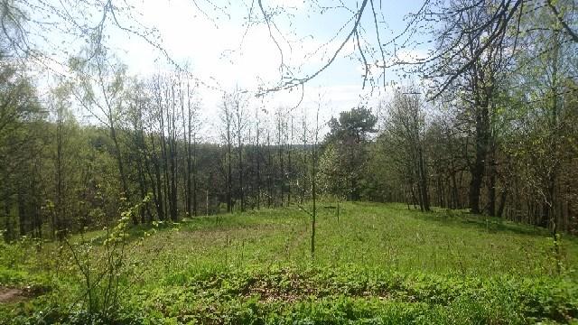 Sukinių piliakalnis