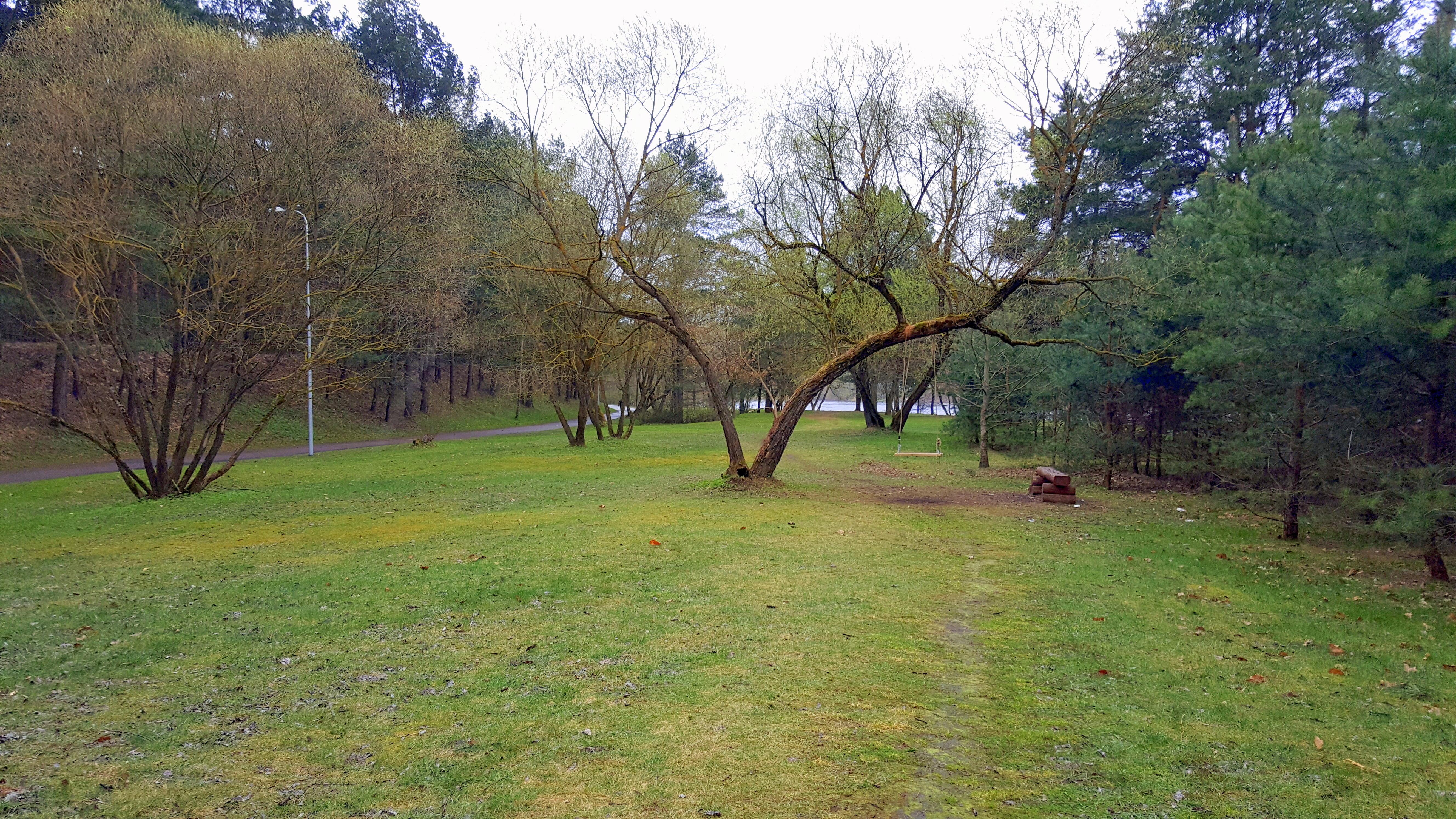Panemunės šilo parkas