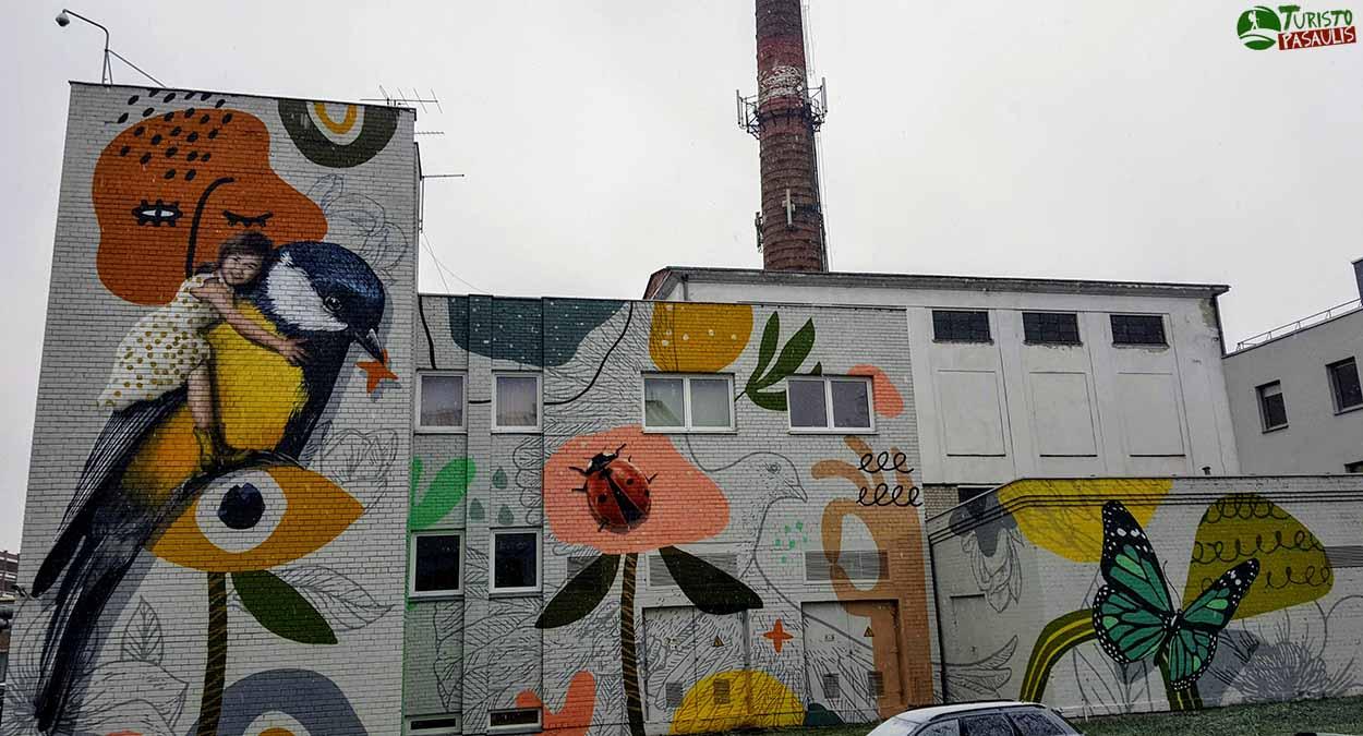 Kauno graffiti - Spalvų sodas