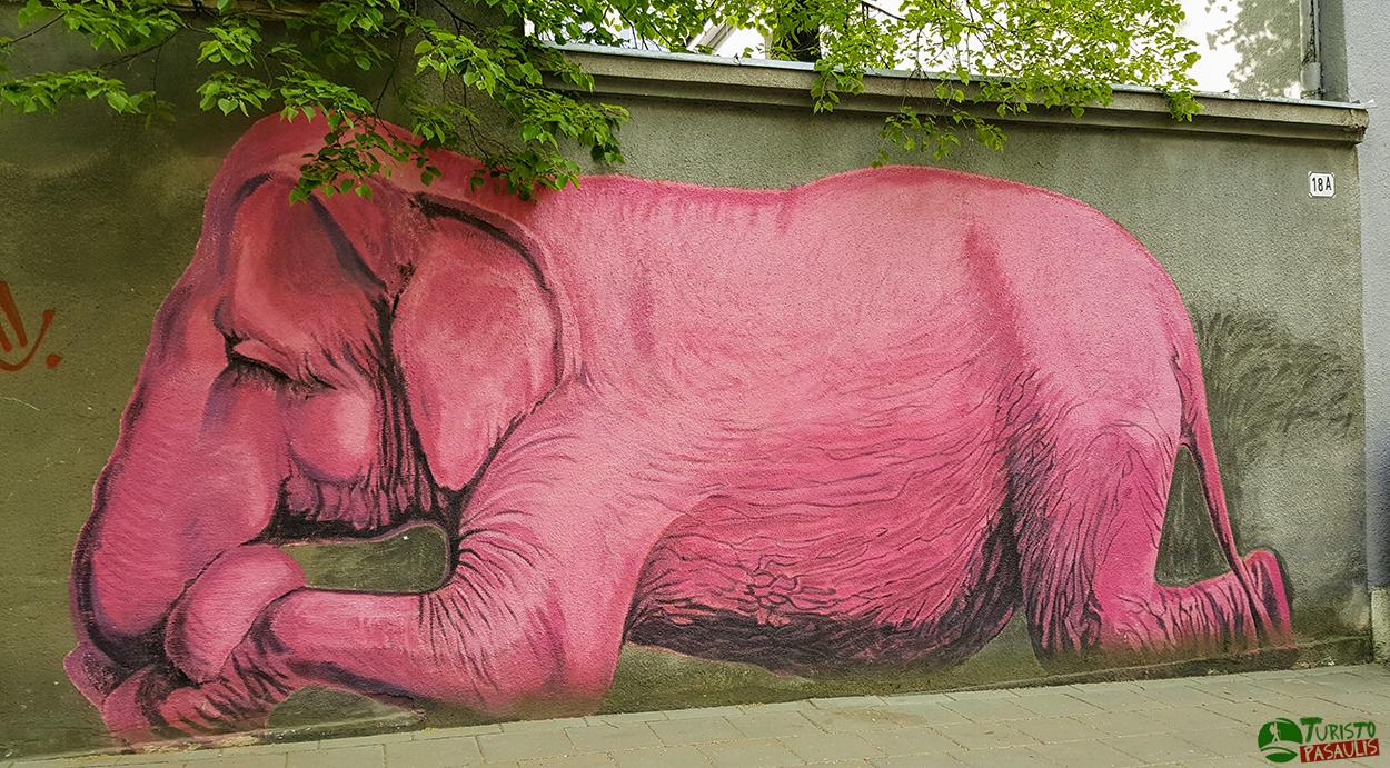 Graffiti Kaunas Rožinis dramblys